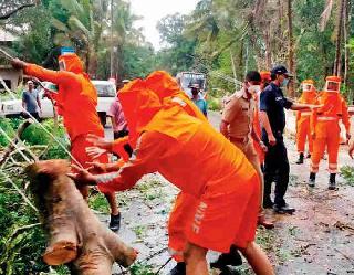 Cyclone Tauktae : मुंबई में तेज हवाओं के साथ हो रही भारी बारिश कई पेड़ गिरे,  तूफान से निपटने के लिए इन राज्यों में IAF और NDRF एक्टिव
