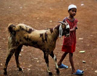 Bakra Eid 2021: 21 जुलाई को मनाई जाएगी बकरीद, जानें कुर्बानी के इस पर्व का इतिहास और महत्व