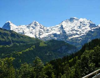 हिमालय में उगने लगी घास, तो फटने लगे पहाड़