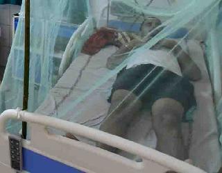 44 नए केस, एक की मौत आफसीजन में खतरनाक हुआ डेंगू